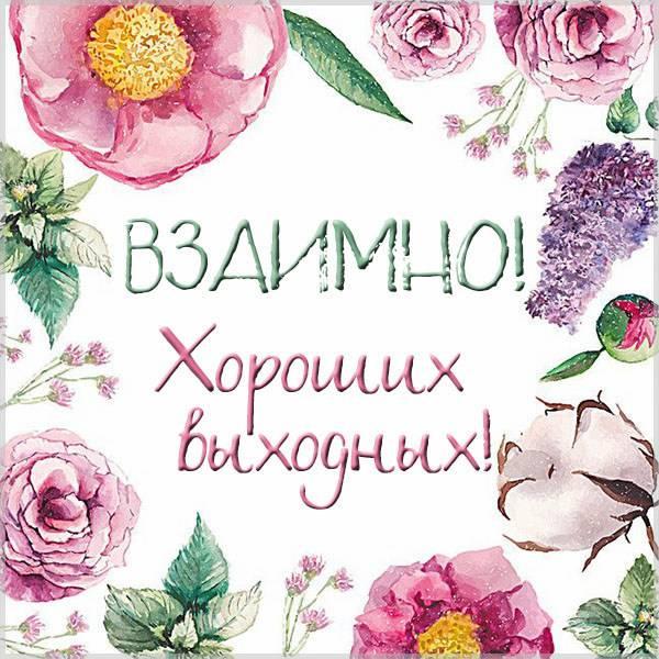 Открытка взаимно хороших выходных - скачать бесплатно на otkrytkivsem.ru
