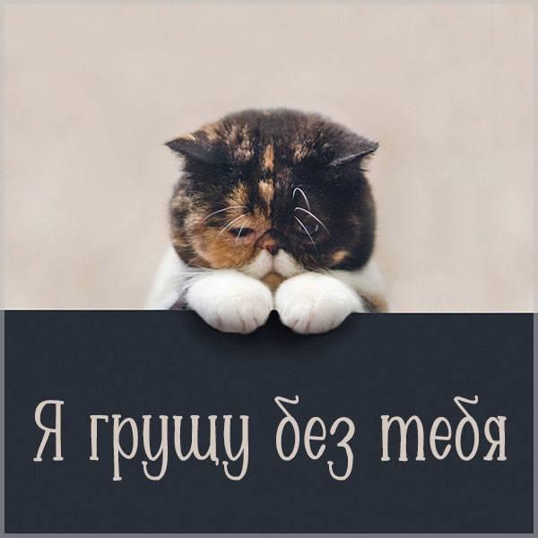 Открытка я грущу без тебя - скачать бесплатно на otkrytkivsem.ru