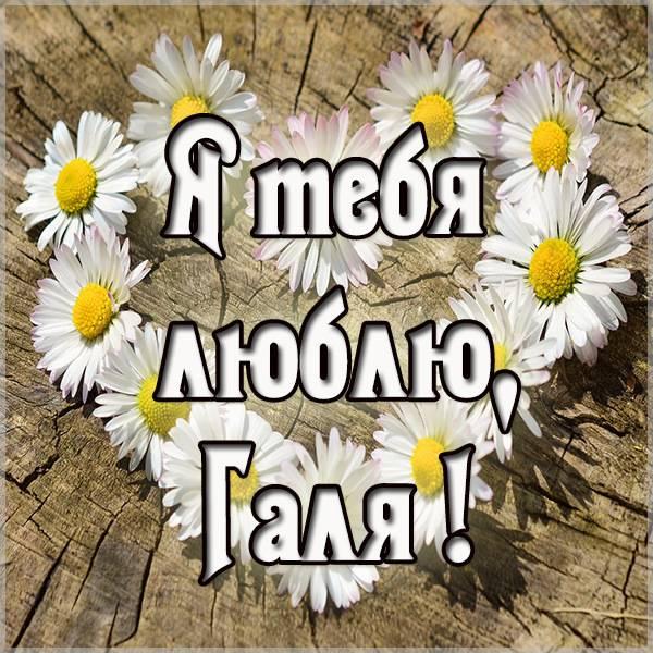 Открытка я люблю Галю - скачать бесплатно на otkrytkivsem.ru