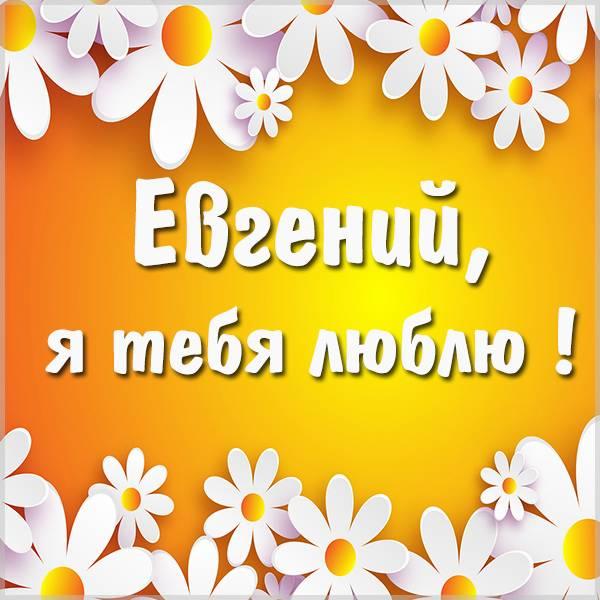 Открытка я люблю тебя Евгений - скачать бесплатно на otkrytkivsem.ru