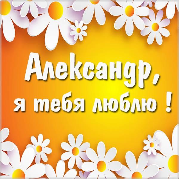 Открытка я тебя люблю мужчине Александру - скачать бесплатно на otkrytkivsem.ru
