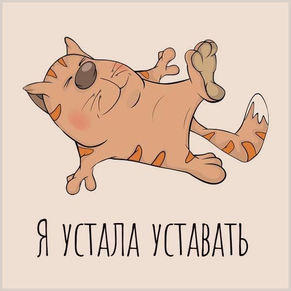 Открытка я устала уставать - скачать бесплатно на otkrytkivsem.ru