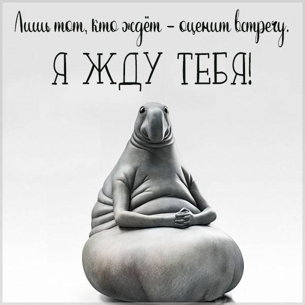 Открытка я жду тебя мужчине - скачать бесплатно на otkrytkivsem.ru