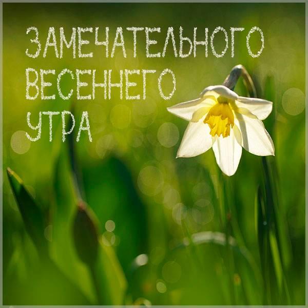 Открытка замечательного весеннего утра - скачать бесплатно на otkrytkivsem.ru