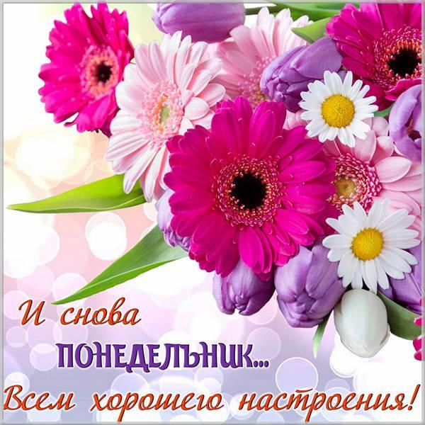 Открытка завтра снова понедельник - скачать бесплатно на otkrytkivsem.ru