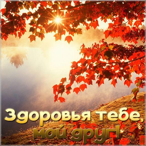 Открытка здоровья тебе мой друг - скачать бесплатно на otkrytkivsem.ru
