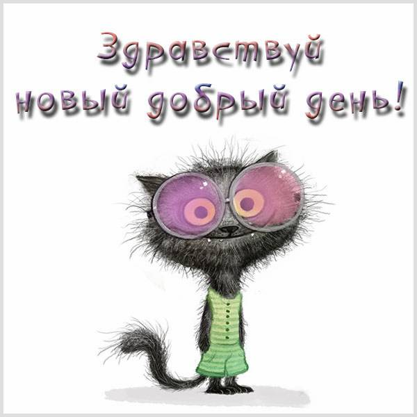 Открытка здравствуй новый добрый день - скачать бесплатно на otkrytkivsem.ru
