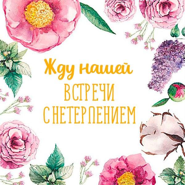 Открытка жду нашей встречи с нетерпением - скачать бесплатно на otkrytkivsem.ru