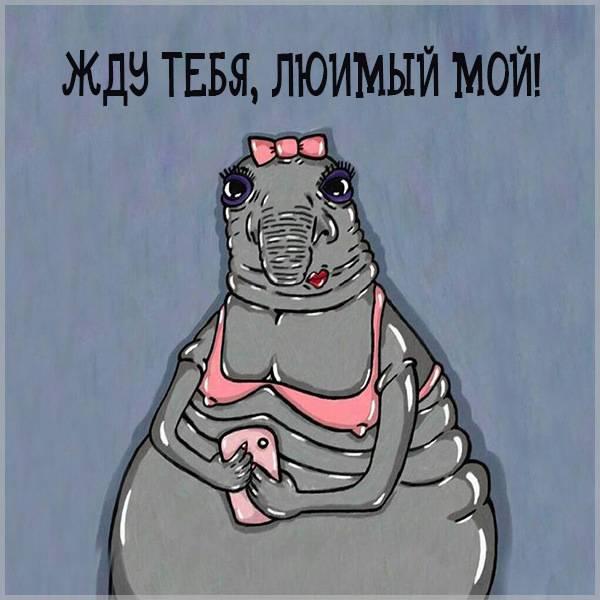 Открытка жду тебя любимый мой - скачать бесплатно на otkrytkivsem.ru