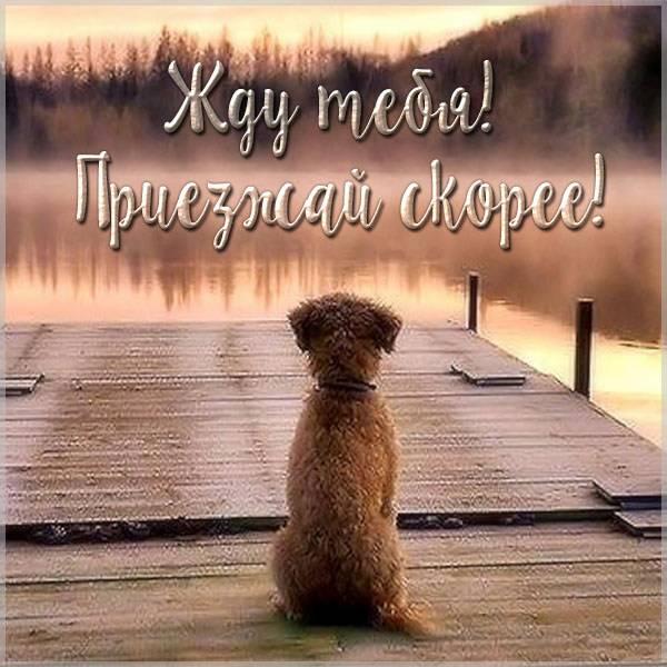 Открытка жду тебя приезжай - скачать бесплатно на otkrytkivsem.ru