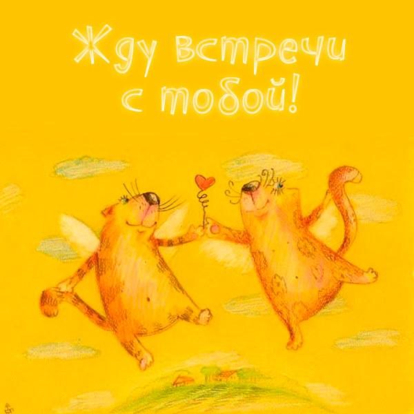 Открытка жду встречи с тобой мужчине - скачать бесплатно на otkrytkivsem.ru