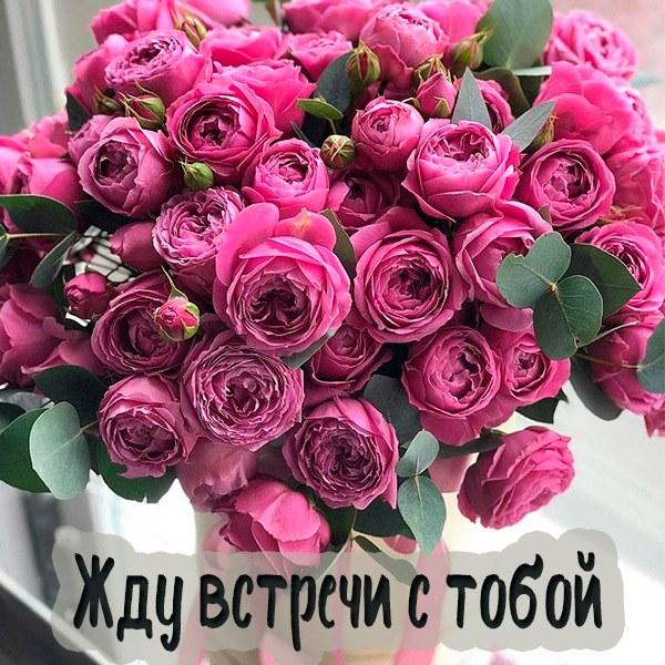 Открытка жду встречи с тобой - скачать бесплатно на otkrytkivsem.ru