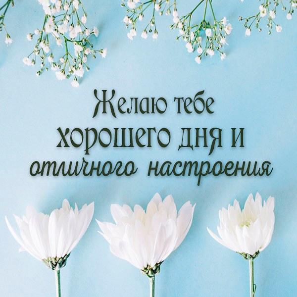 Открытка желаю хорошего дня отличного настроения - скачать бесплатно на otkrytkivsem.ru