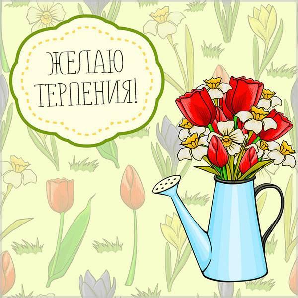 Открытка желаю терпения - скачать бесплатно на otkrytkivsem.ru