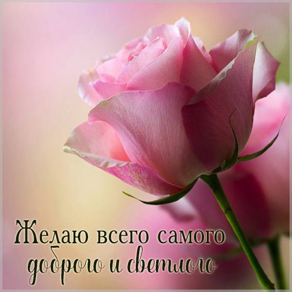 Открытка желаю всего самого доброго - скачать бесплатно на otkrytkivsem.ru