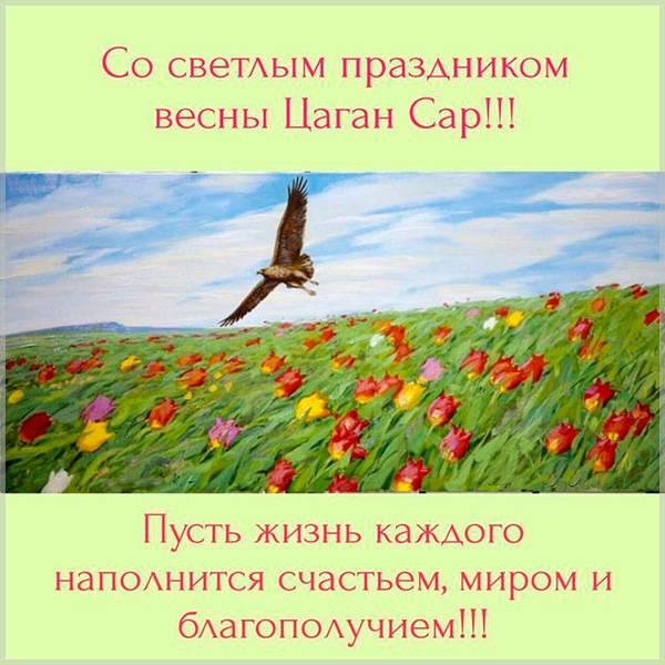 Поздравительная открытка на Цаган Сар - скачать бесплатно на otkrytkivsem.ru