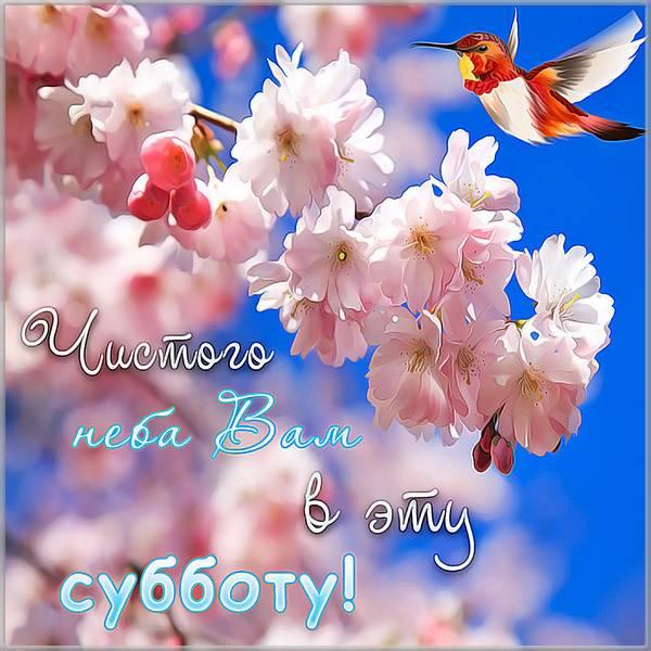 Поздравительная открытка с субботой - скачать бесплатно на otkrytkivsem.ru