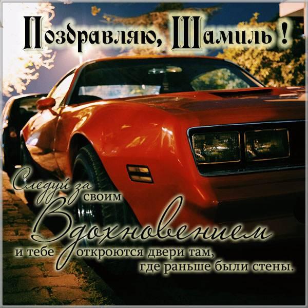 Поздравительная открытка Шамилю - скачать бесплатно на otkrytkivsem.ru