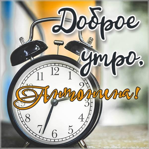 Пожелание доброе утро Антонина в картинке - скачать бесплатно на otkrytkivsem.ru