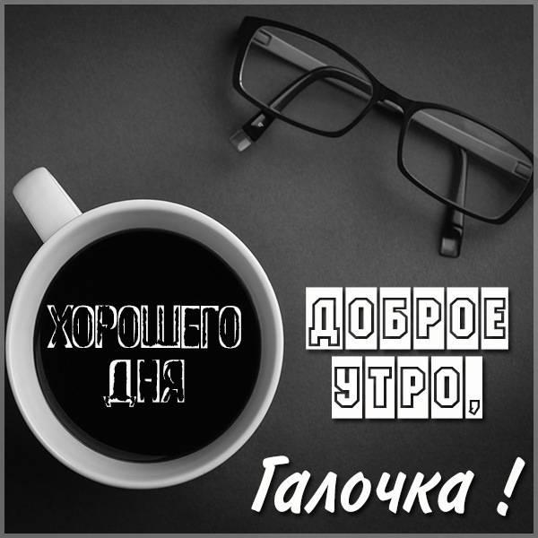 Пожелание доброе утро Галочка в картинке - скачать бесплатно на otkrytkivsem.ru