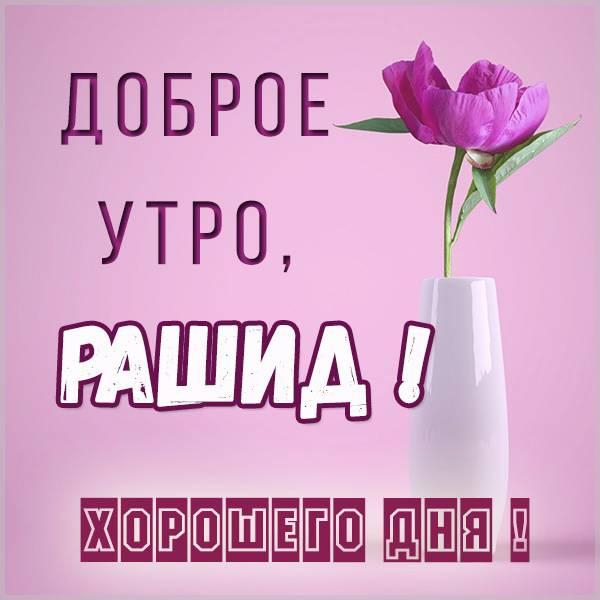 Пожелание доброе утро Рашид в картинке - скачать бесплатно на otkrytkivsem.ru