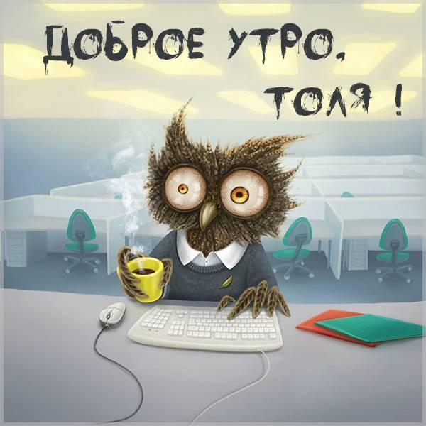 Пожелание доброе утро Толя в картинке - скачать бесплатно на otkrytkivsem.ru