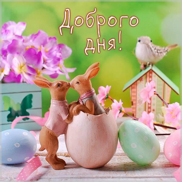 Пожелание доброго дня в картинке прикольное весеннее - скачать бесплатно на otkrytkivsem.ru
