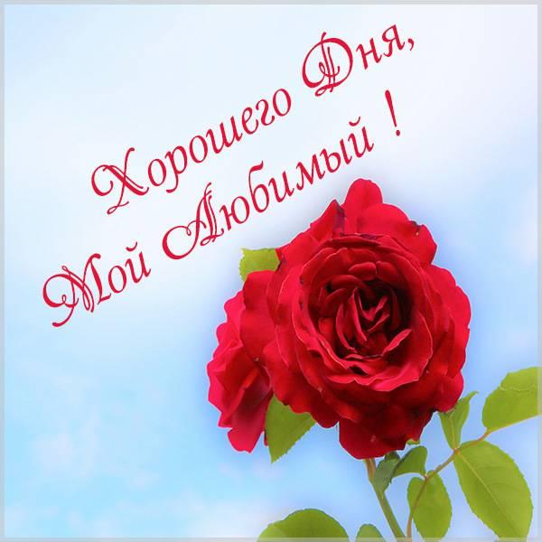 Пожелание хорошего дня любимому мужчине своими словами - скачать бесплатно на otkrytkivsem.ru