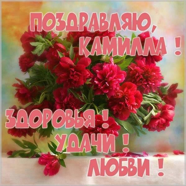 Пожелание Камилле в картинке - скачать бесплатно на otkrytkivsem.ru