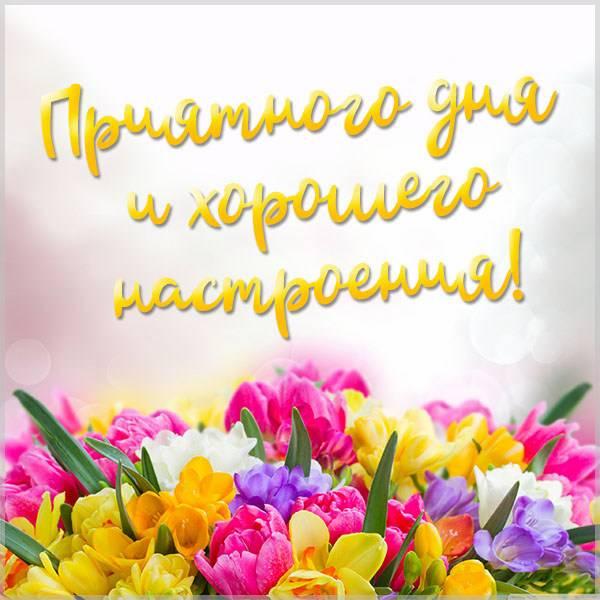Пожелание приятного дня и хорошего настроения в картинке - скачать бесплатно на otkrytkivsem.ru