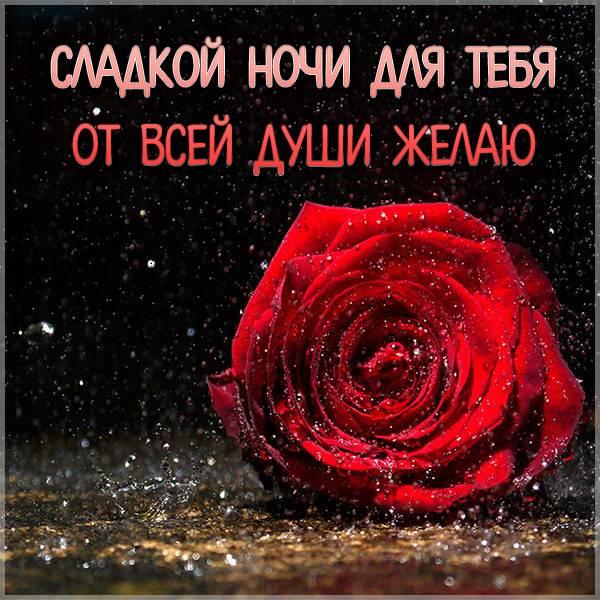 Пожелание сладкой ночи в картинке - скачать бесплатно на otkrytkivsem.ru
