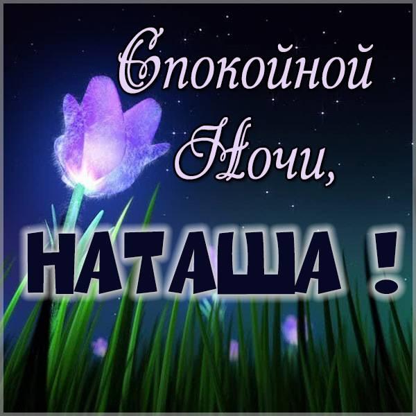 Пожелание спокойной ночи Наташа в картинке - скачать бесплатно на otkrytkivsem.ru