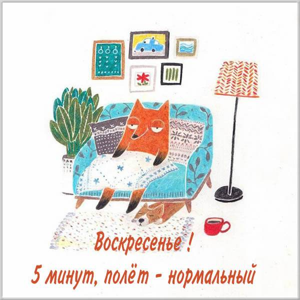 Прикольная бесплатная картинка про воскресенье для поднятия настроения - скачать бесплатно на otkrytkivsem.ru