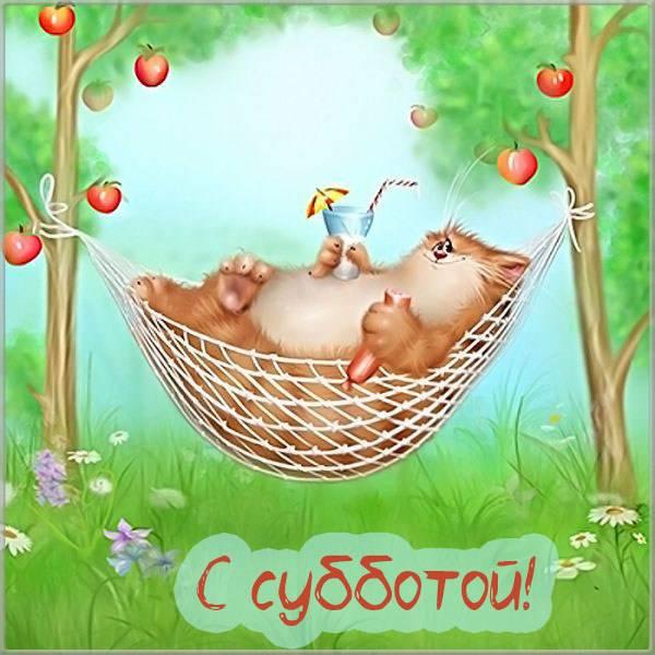 Прикольная бесплатная картинка с субботой - скачать бесплатно на otkrytkivsem.ru