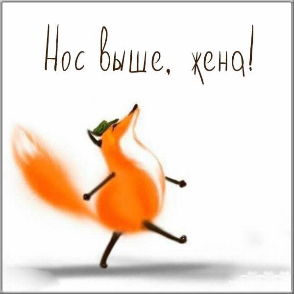Прикольная электронная открытка для жены - скачать бесплатно на otkrytkivsem.ru