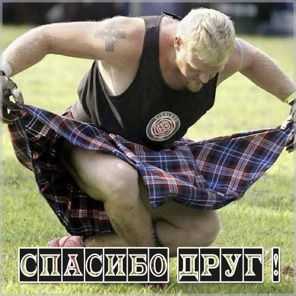 Прикольная картинка благодарю спасибо друг - скачать бесплатно на otkrytkivsem.ru