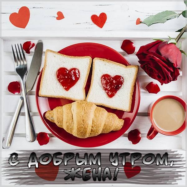 Прикольная картинка для жены с добрым утром - скачать бесплатно на otkrytkivsem.ru