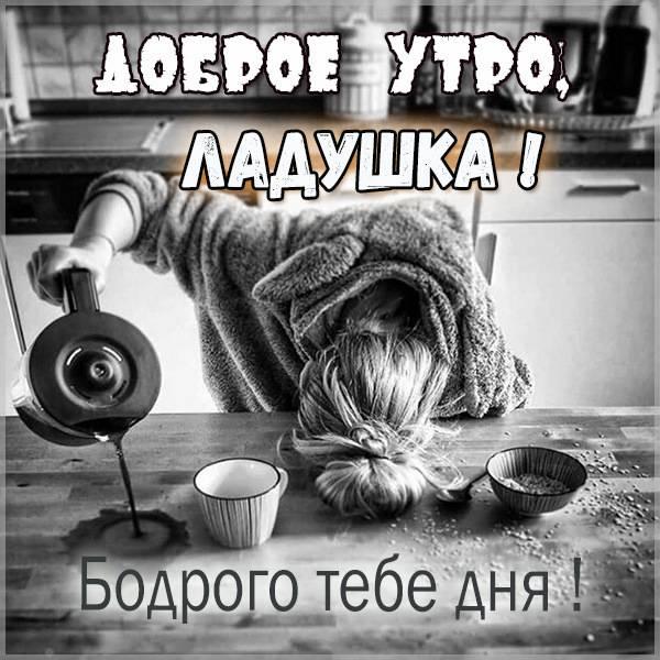 Прикольная картинка доброе утро Ладушка - скачать бесплатно на otkrytkivsem.ru