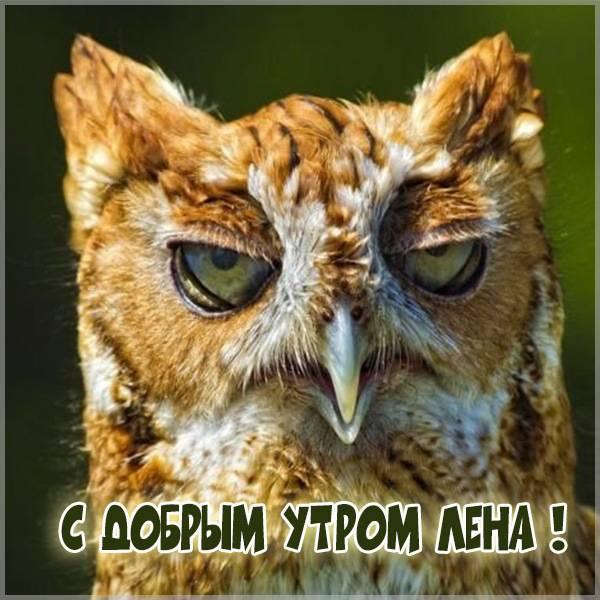 Прикольная картинка доброе утро Лена - скачать бесплатно на otkrytkivsem.ru