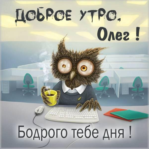 Прикольная картинка доброе утро Олег - скачать бесплатно на otkrytkivsem.ru