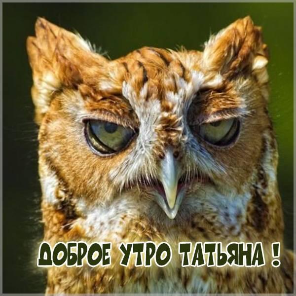 Прикольная картинка доброе утро Татьяна - скачать бесплатно на otkrytkivsem.ru
