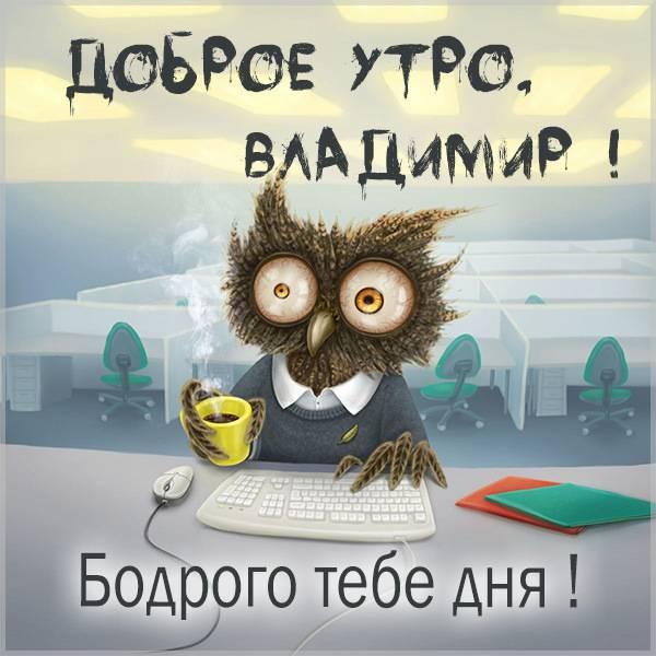 Прикольная картинка доброе утро Владимир - скачать бесплатно на otkrytkivsem.ru