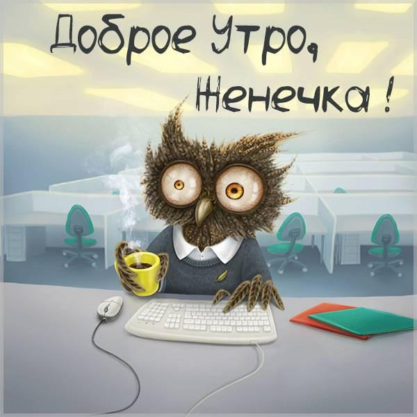 Прикольная картинка доброе утро Женечка - скачать бесплатно на otkrytkivsem.ru
