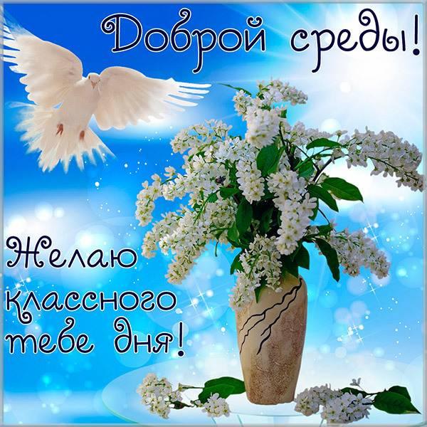 Прикольная картинка доброй среды и хорошего дня - скачать бесплатно на otkrytkivsem.ru