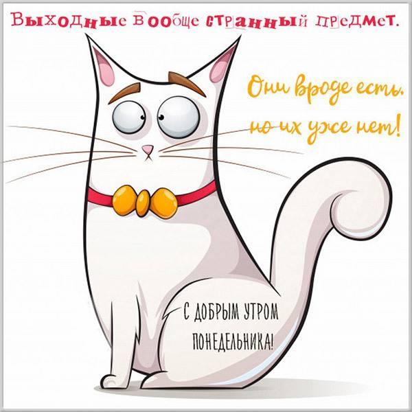 Прикольная картинка друзьям с добрым утром в понедельник - скачать бесплатно на otkrytkivsem.ru