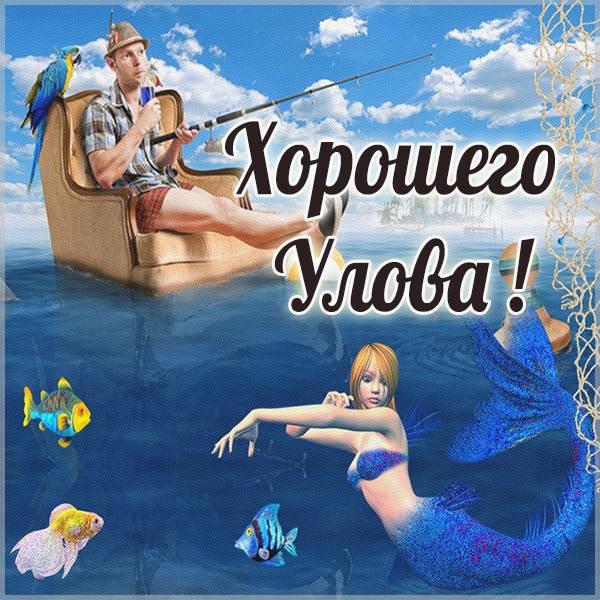 Прикольная картинка хорошего улова - скачать бесплатно на otkrytkivsem.ru