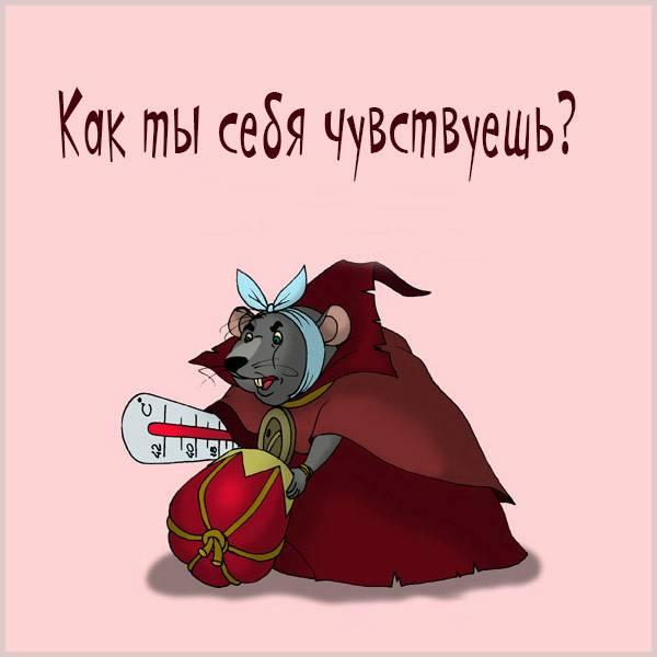Прикольная картинка как ты себя чувствуешь - скачать бесплатно на otkrytkivsem.ru