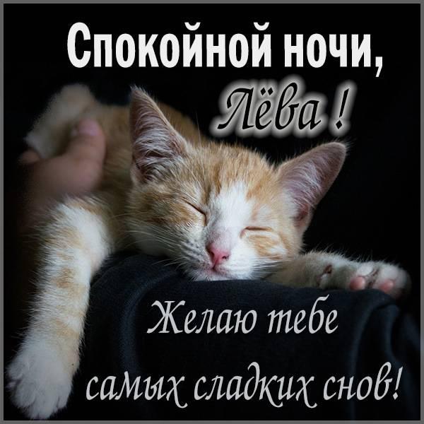 Прикольная картинка Лева спокойной ночи - скачать бесплатно на otkrytkivsem.ru