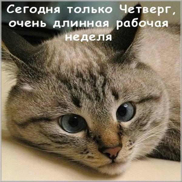 Прикольная картинка на день недели четверг - скачать бесплатно на otkrytkivsem.ru