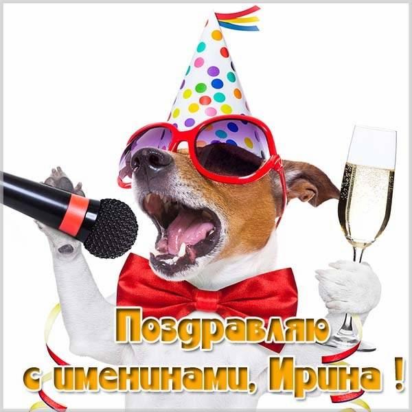 Прикольная картинка на именины Ирины - скачать бесплатно на otkrytkivsem.ru